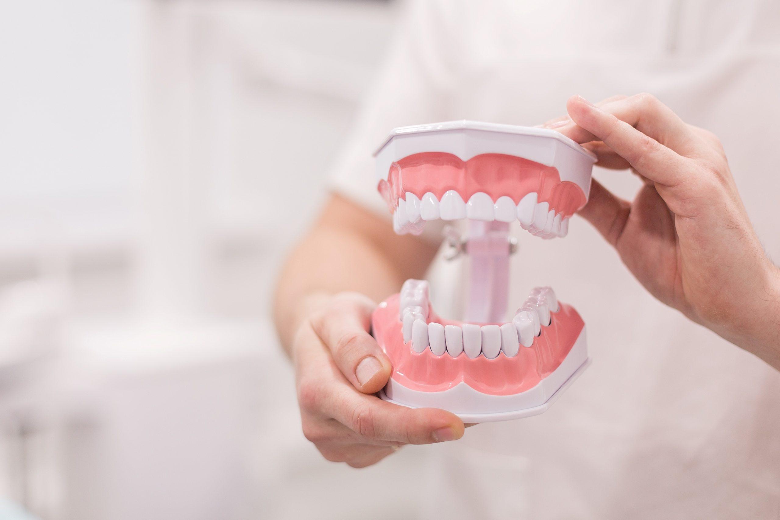 ¿Conocemos realmente nuestros dientes