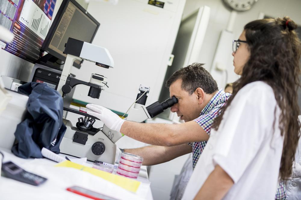 Apoyamos la investigación del pie diabético