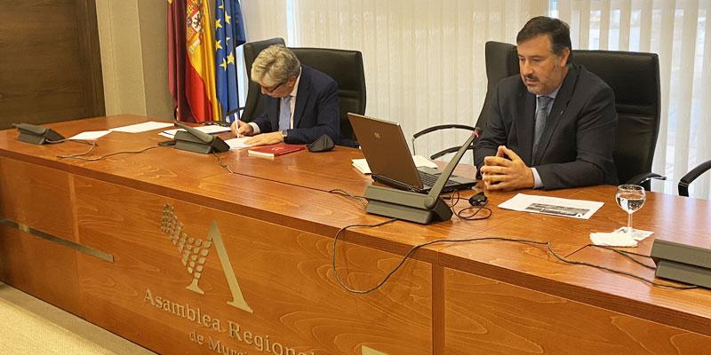 Luis Mesa del Castillo ofrece la visión de la sanidad privada en la Asamblea Regional de Murcia